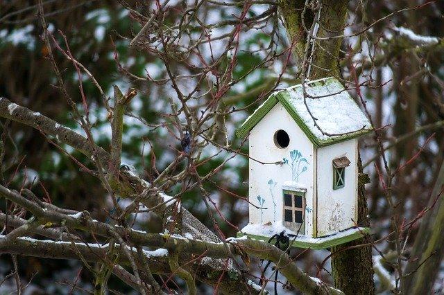 karmnik dla ptaków do montażu